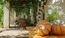 Sicily in Agritourism